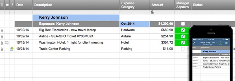 expense report 7141