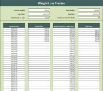 weight loss challange spreadsheet template 222